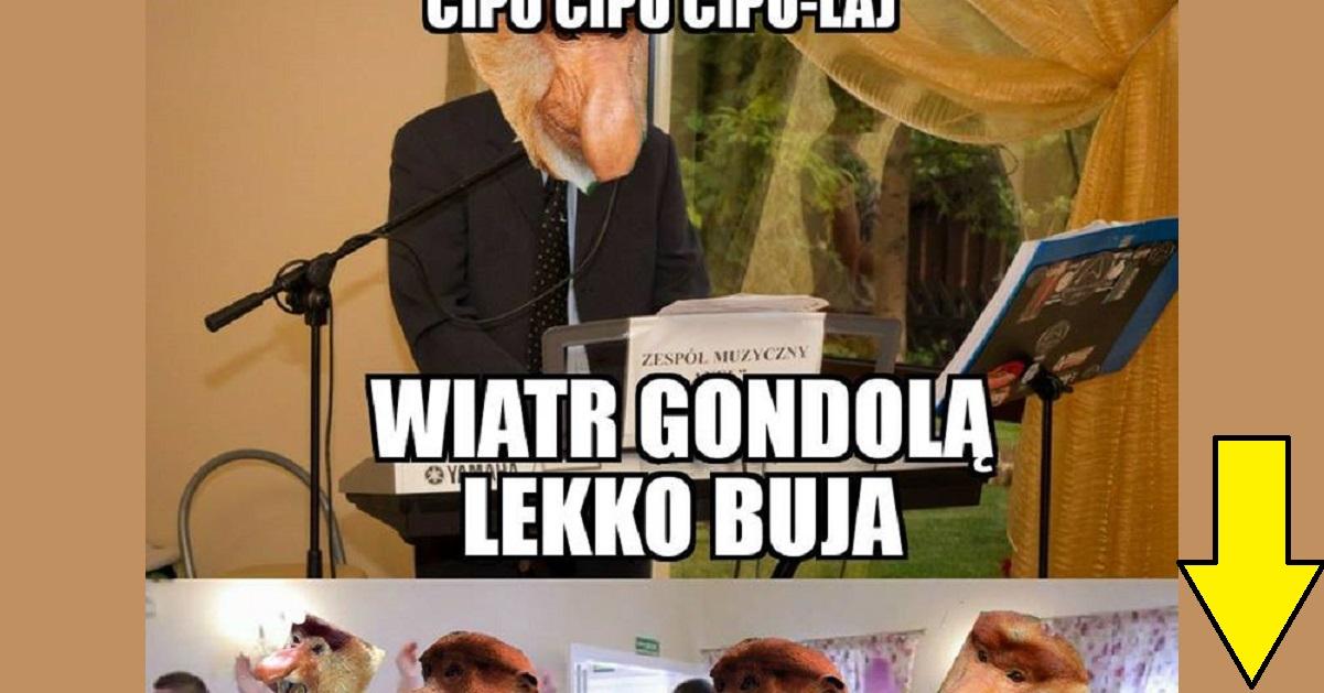 Janusze Na Weselu Lolspl Humor Demotywatory Memy