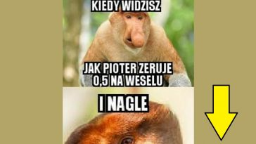 Janusz Vs Wompierz Lolspl Humor Demotywatory Memy